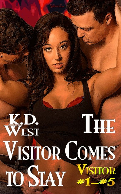 The Visitor Comes to Stay: A Quintet of Friendly MMF Ménage Tales (Visitor 1-5)