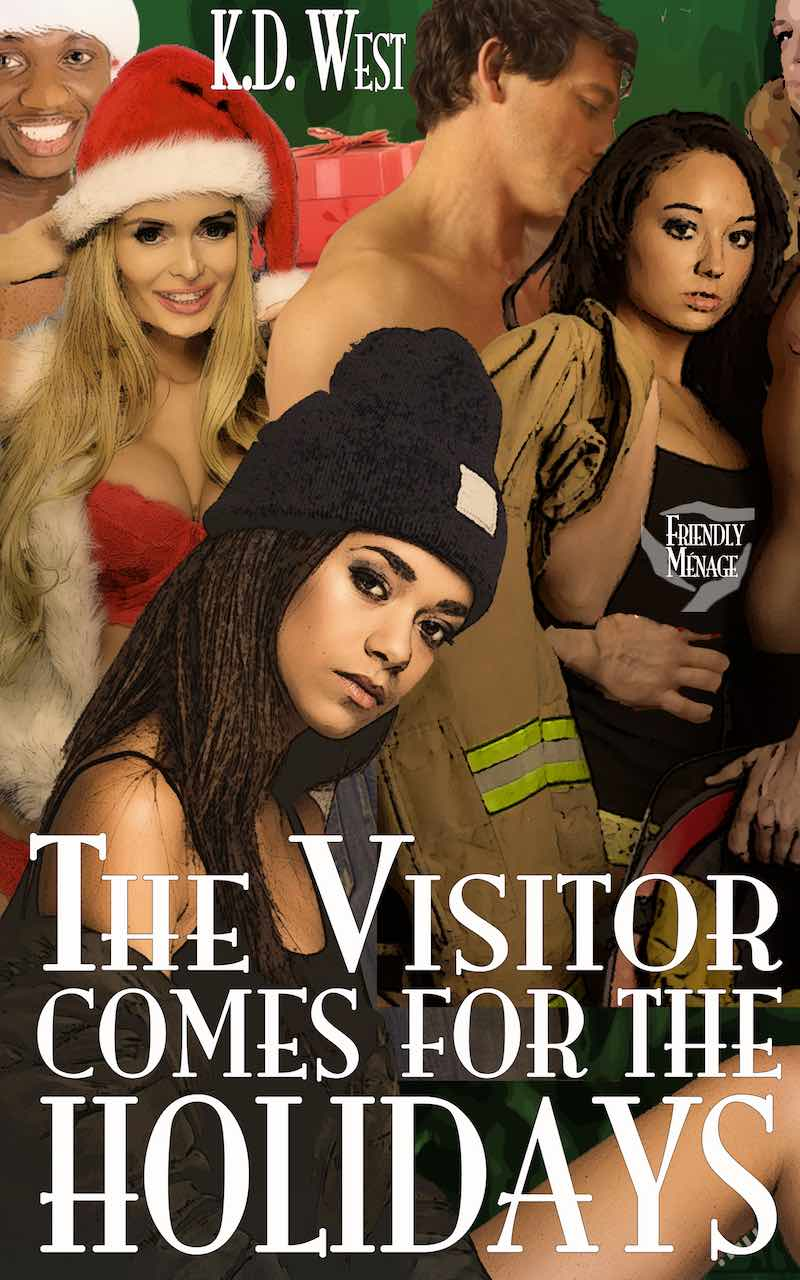The Visitor Comes for the Holidays cover