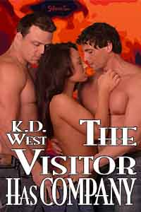 The Visitor Has Company cover